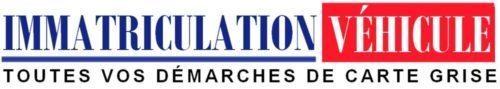 Immatriculation Véhicule Logo